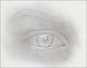 eye drawing lesson